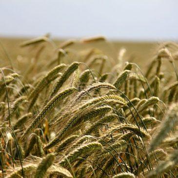 Mобилна интернет школа за пољопривреднике